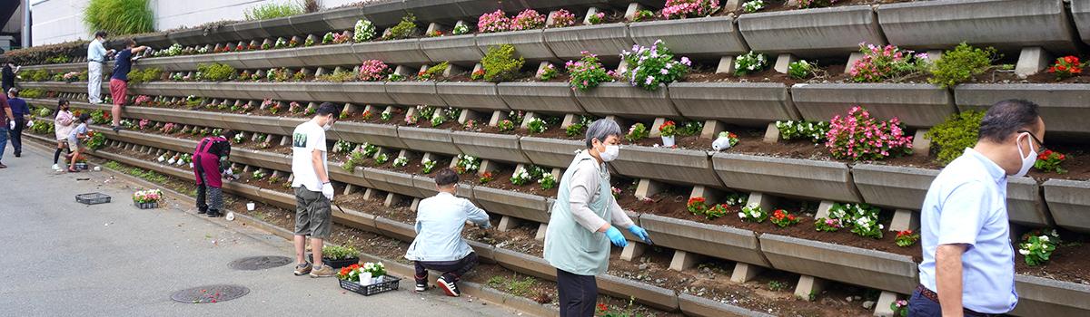 駅前線路沿い花壇植え替え